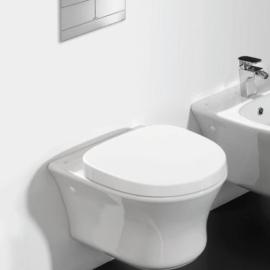 Hotels seinapealne WC-pott koos raami ja nupuga
